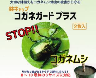 大切な鉢植えをコガネムシから守る鉢キャップコガネガードプラス